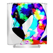 Colored Flamingo Shower Curtain