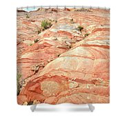 Colored Hill In Valley Of Fire Shower Curtain