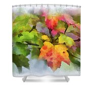 Colorful Autumn Leaves - Digital Watercolor Shower Curtain