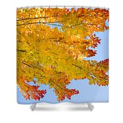 Colorful Autumn Reaching Out Shower Curtain
