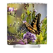 Colorful Butterfly Shower Curtain