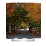 Colorful Byway Shower Curtain