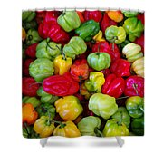 Colorful Chili Pepper Shower Curtain
