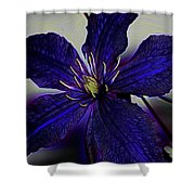 Colorful Clematis Shower Curtain