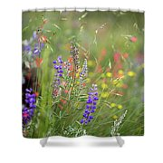 Colorful Colorado #2 Shower Curtain