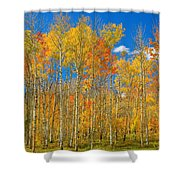 Colorful Colorado Autumn Landscape Shower Curtain