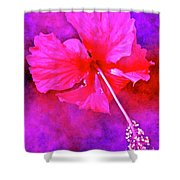 Colorful Cosmic Flower-hibiscus Shower Curtain