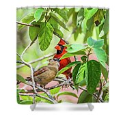 Colorful Couple Shower Curtain