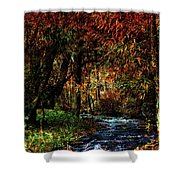 Colorful Creek Shower Curtain