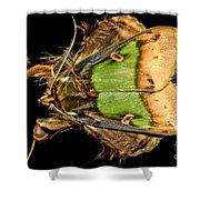 Colorful Cryptic Moth Shower Curtain