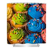 Colorful Cupcake Shower Curtain