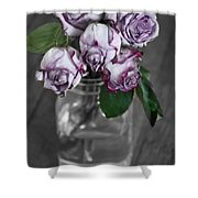 Bring Color To My World Shower Curtain