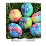 Colorful Easter Eggs On Green Grass Shower Curtain