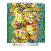 Colorful Eggs Shower Curtain