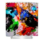 Colorful Expression 13 Shower Curtain