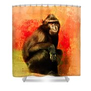 Colorful Expressions Black Monkey Shower Curtain