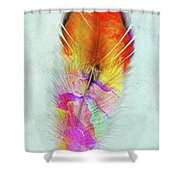 Colorful Feather Art Shower Curtain