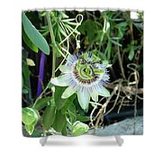 Colorfull Flower Shower Curtain