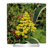 Colorful Flowers Blooming Shower Curtain