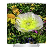 Colorful Garden Shower Curtain