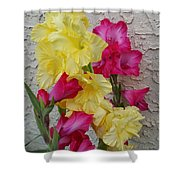 Colorful Glads Shower Curtain