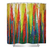 Colorful Grace Shower Curtain