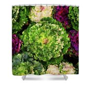 Colorful Green, White And Purple Flowers Painting Shower Curtain