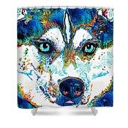 Colorful Husky Dog Art By Sharon Cummings Shower Curtain