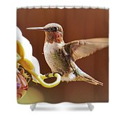 Colorful Landing Shower Curtain