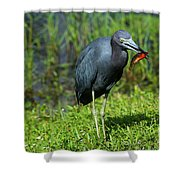 Colorful Lunch Shower Curtain