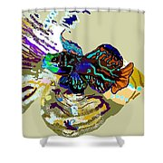 Colorful Manderin Fish Shower Curtain