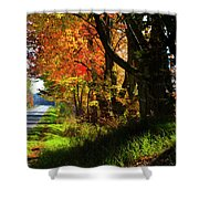Colorful Maples Shower Curtain