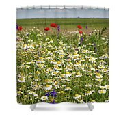 Colorful Meadow With Wild Flowers Shower Curtain