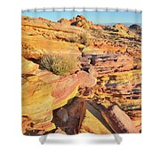 Colorful Morning At Valley Of Fire Shower Curtain