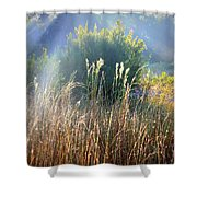 Colorful Morning Marsh Shower Curtain