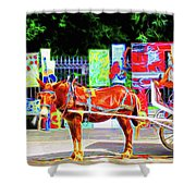 Colorful New Orleans Shower Curtain