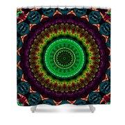 Colorful No. 4 Mandala Shower Curtain