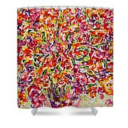 Colorful Organza Shower Curtain