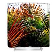 Colorful Palm Leaves Shower Curtain