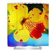 Colorful Pansies Shower Curtain
