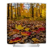 Colorful Path Shower Curtain