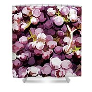 Colorful Pink Tasty Grapes In The Basket Shower Curtain