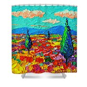 Colorful Poppies Field Abstract Landscape Impressionist Palette Knife Painting By Ana Maria Edulescu Shower Curtain