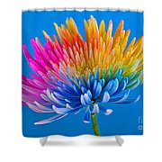 Colorful Precious Shower Curtain