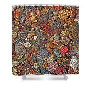 Colorful Rocks In Stream Bed Montana Shower Curtain