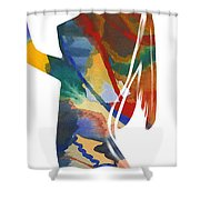Colorful Shape Shower Curtain