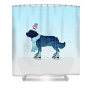 Colorful Skater Shower Curtain