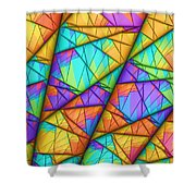 Colorful Slices Shower Curtain
