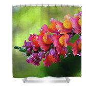 Colorful Snapdragon Shower Curtain