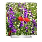 Colorful Spring Wild Flowers Shower Curtain